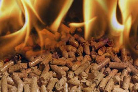 Pellet e legna come e quanto li usano le famiglie for Pellet immagini