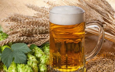 Risultati immagini per trebbie di birra