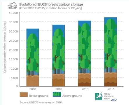 Uso energetico delle biomasse legnose pro e contro per - Aria condizionata canalizzata pro e contro ...