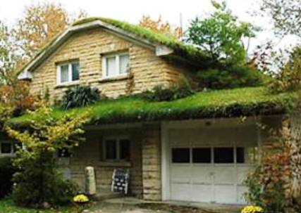 Erba e piante sul tetto costi e vantaggi dei tetti verdi